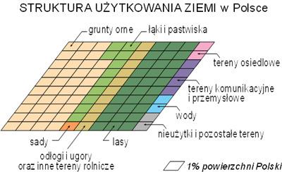 Polska_uzytkowanieziemi.jpg